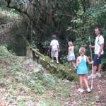 A hike into the rainforest